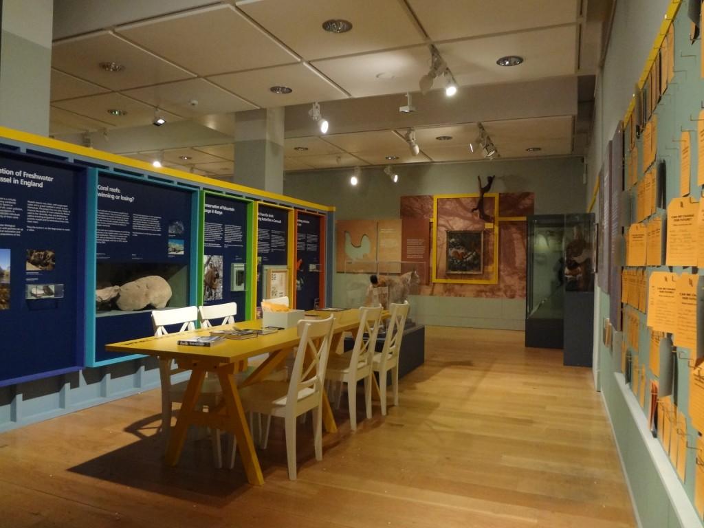 Manchester Museum Exhibition/ Furniture Build.