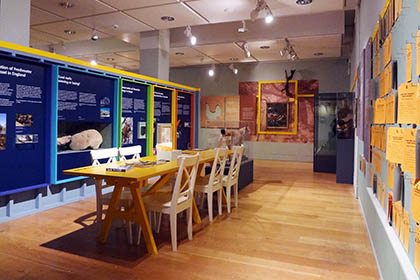Manchester Museum – Exhibition / Furniture Build